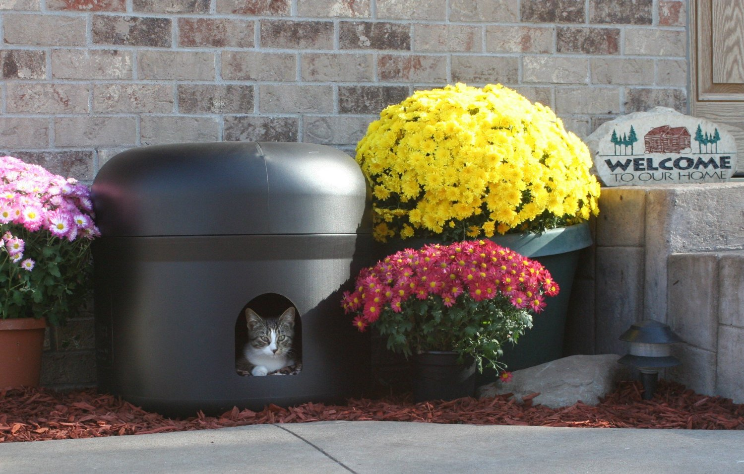 Keep Those Outdoor Cats Warm This Winter The Pet Furniture Store