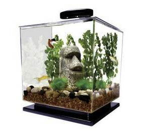 great way to get into fishkeeping - The Pet Furniture Store