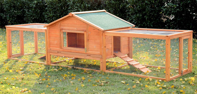 Rabbit Hutch Designs Nz