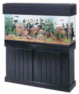 All-Glass-Aquarium-AAG54210-Pine-Canopy-48-Inch-0