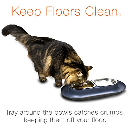 Cat Food Bowl That Keeps Dogs Out