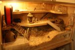 hamster-habitat