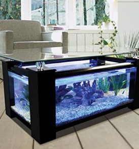 36gl-Rectangle-coffee-table-aquarium-completely-fish-ready-with-hidden ...