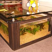 68-Gallon-Square-Coffee-Table-Aquarium-Fish-Ready-with-Light-and-Filter-0