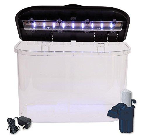 Api panaview aquarium kit with led lighting and power for 5 gallon fish tank filter