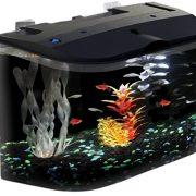 API-Panaview-Aquarium-Kit-with-LED-Lighting-and-Power-Filter-5-Gallon-0