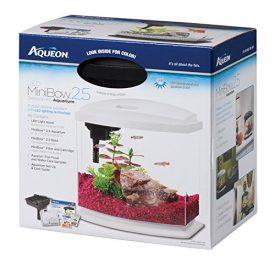 Aqueon-Betta-Bow-LED-Fish-Aquarium-Kit-0