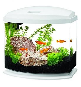 68 gallon square coffee table aquarium fish ready with for Cheap 5 gallon fish tank