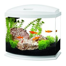 Aqueon-Products-Glass-Aqueon-Led-Mini-Bow-Aquarium-Kit-White-5-Gallon-17785-0