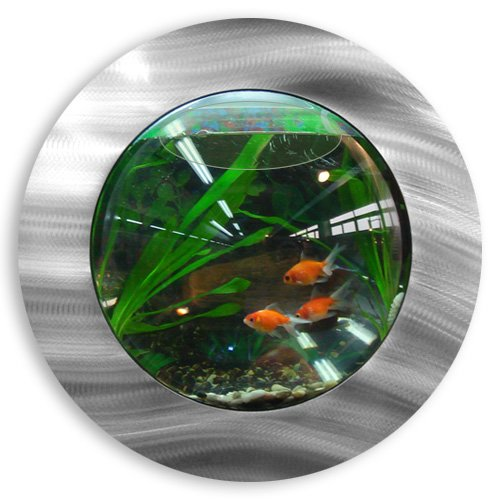 fish bubbles brushed aluminum fish bubble with deluxe wall. Black Bedroom Furniture Sets. Home Design Ideas