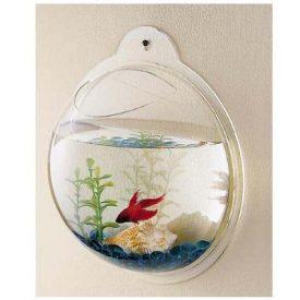 Fish-Bubble-Wall-Mounted-Acrylic-Fish-Bowl-0