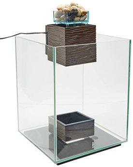 Fluval-Chi-II-Aquarium-Set-5-Gallon-0