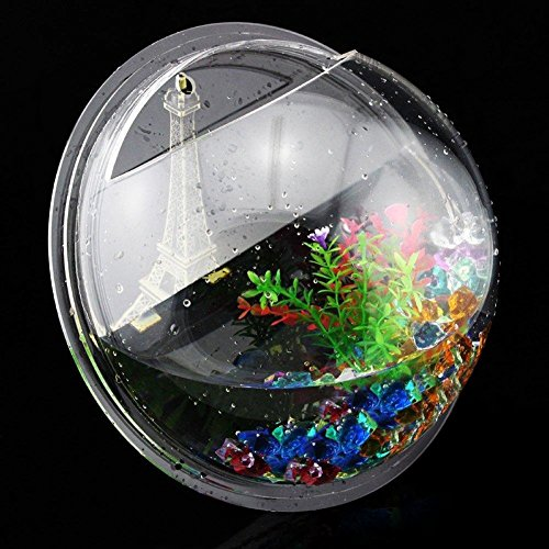 Homecube wall hanging bubble fish tank flowerpot wall for Acrylic fish bowl