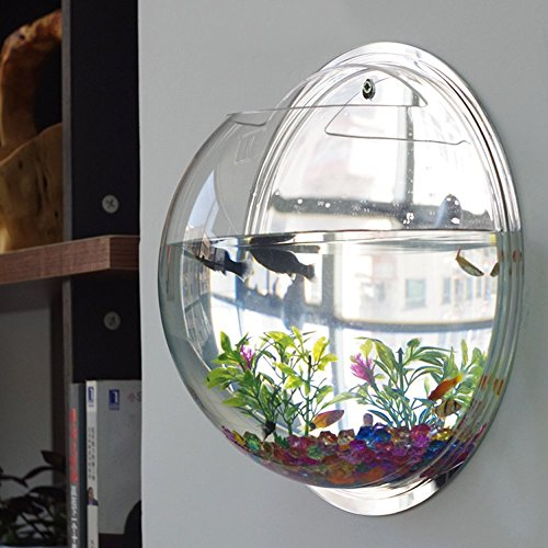 Homecube wall hanging bubble fish tank flowerpot wall for Fish wall mount