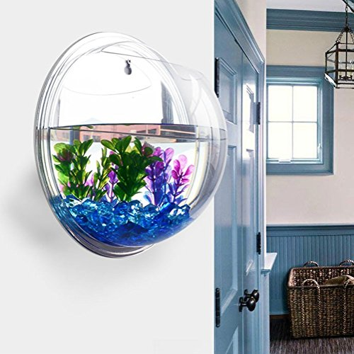 -Wall-Hanging-Bubble-Fish-Tank-Flowerpot-Wall-Mount-Acrylic-Fish ...