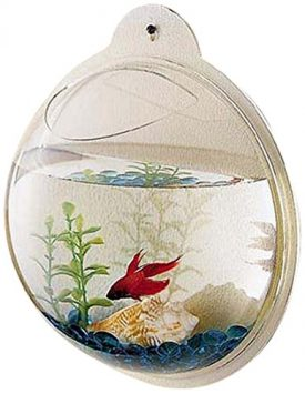 KAZE-HOME-Wall-Mount-Fishbowl-0