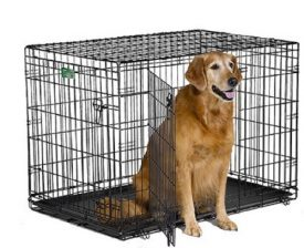 MidWest-iCrate-Double-Door-Folding-Metal-Dog-Crate-42-Inches-by-28-Inches-by-30-Inches-0