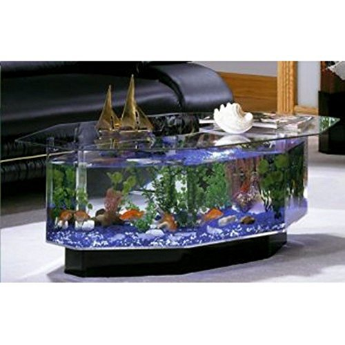 Aquarium Coffee Table ...