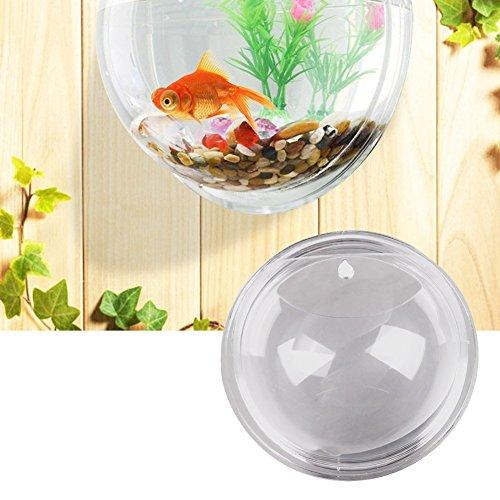 Vktech plant wall hanging mount bubble aquarium bowl fish for Bubbles in fish bowl