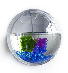 68 Gallon Square Coffee Table Aquarium Fish Ready With