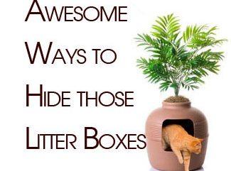 hide-litter-boxes3
