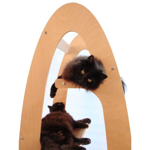 Contoure Modern Cat Tree Tower Unfinished Birch By