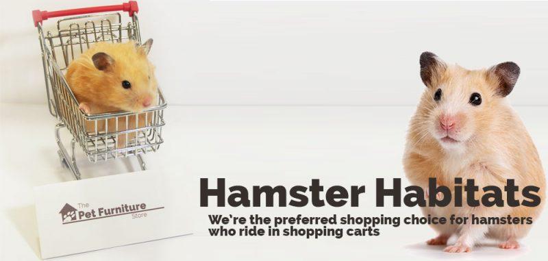 hamster-title