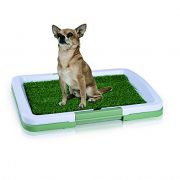 Oriental-eLife-Indoor-Pet-Toilet-Dog-Grass-Restroom-Potty-Training-with-Tray-and-Loo-Pad-0