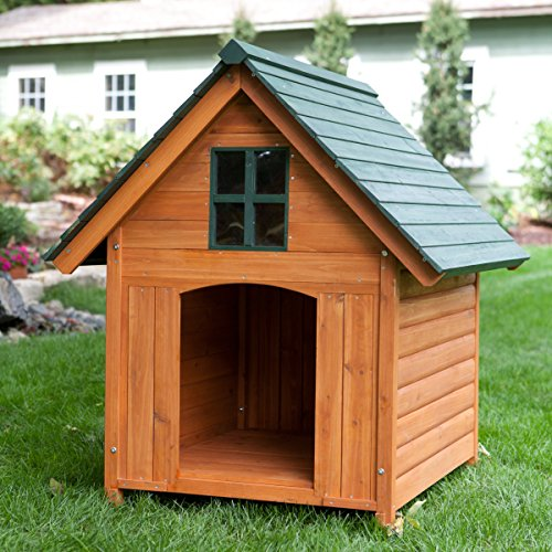 Extra large outdoor dog house dog kennel 40w x 44d x 47h for Zero dog house