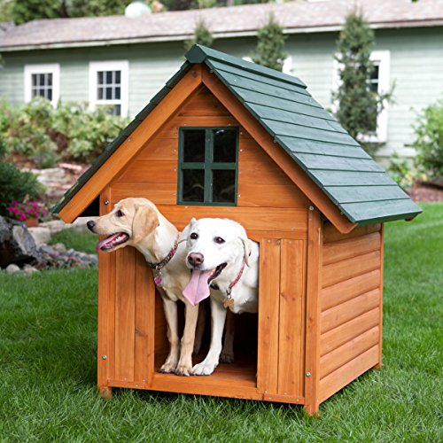 Extra large outdoor dog house dog kennel 40w x 44d x 47h for Dog run outdoor kennel house