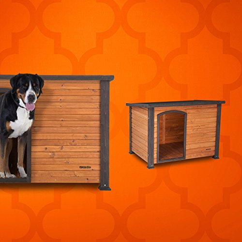 10 Dog Houses That Will Make Humans And Dogs Drool With