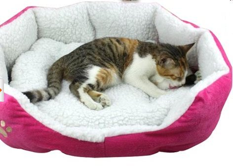 Pink Sherpa Cat Bed For Cool Cats Who Love Pink