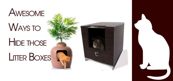 Litter box concealment ideas